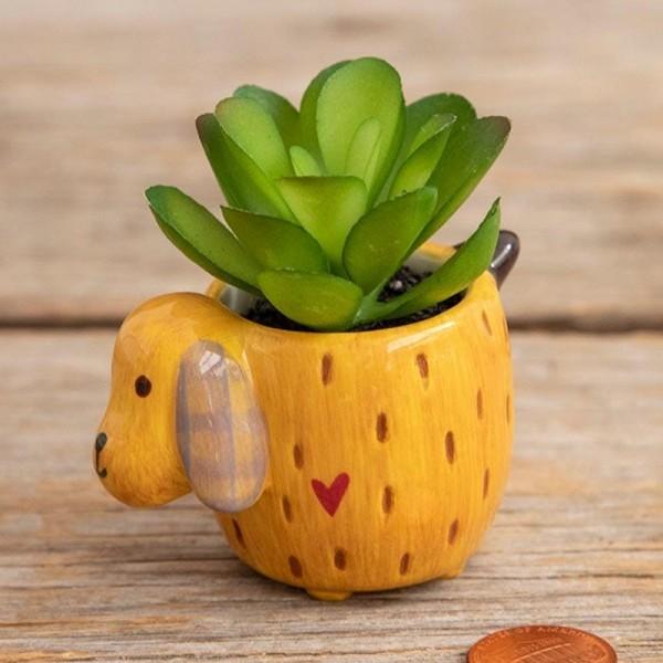 Vase Kaktus Set Yellow Dog