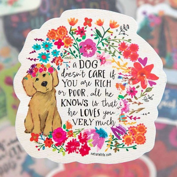 Sticker A dog doesnt care
