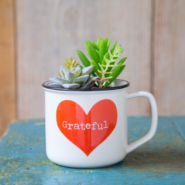 Tasse Kaktus 2in1 Set Gratitude