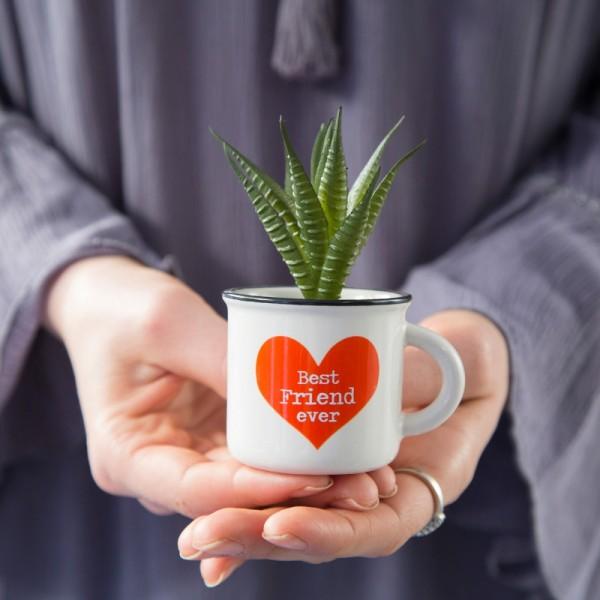 Tasse Kaktus 2in1 Mini Set Best Friend