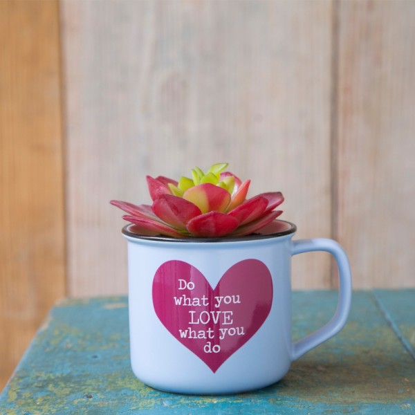 Tasse Kaktus 2in1 Set Do Love