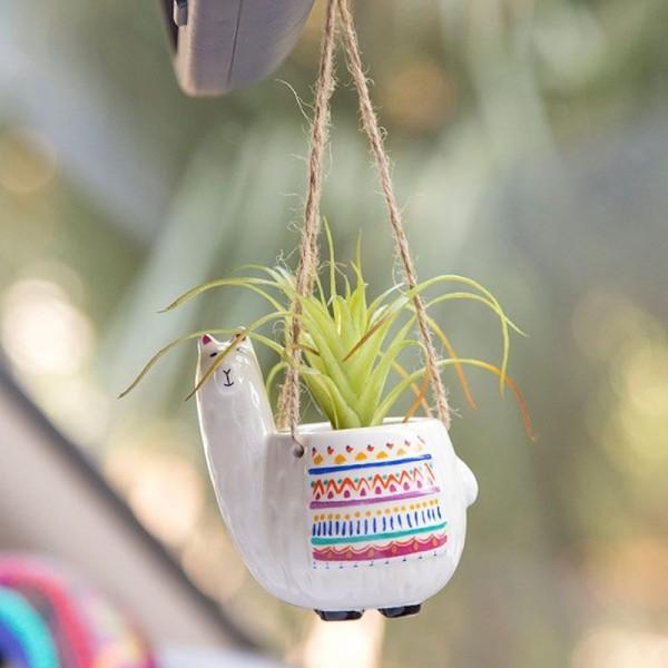 Mini Makrame Kaktus Set LLama