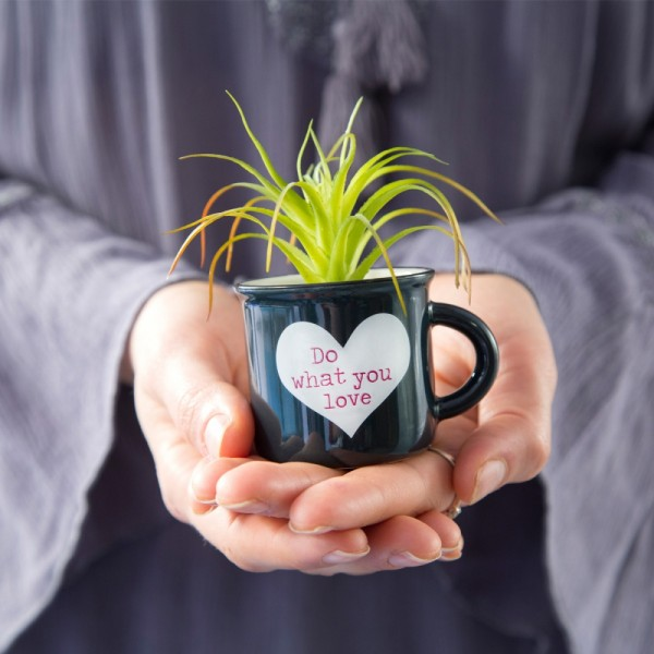 Tasse Kaktus 2in1 Mini Set Do Love
